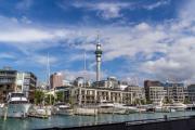 Auckland-7594