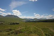 Scotland_40D__0360a