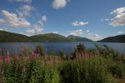 Scotland_40D__0515a