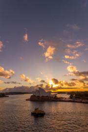 Sydney-8968
